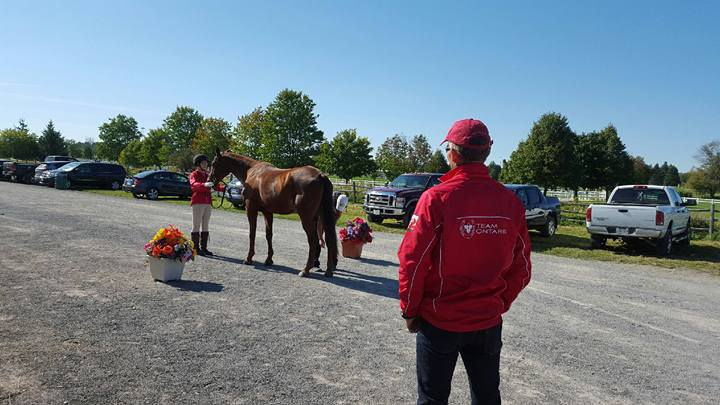 Jenna presenting Kip at the first Horse Inspection at CIEC's today.