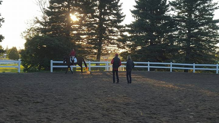 Jenna and Kip having an early morning lesson from Tom Dvorak and Simone Williams.
