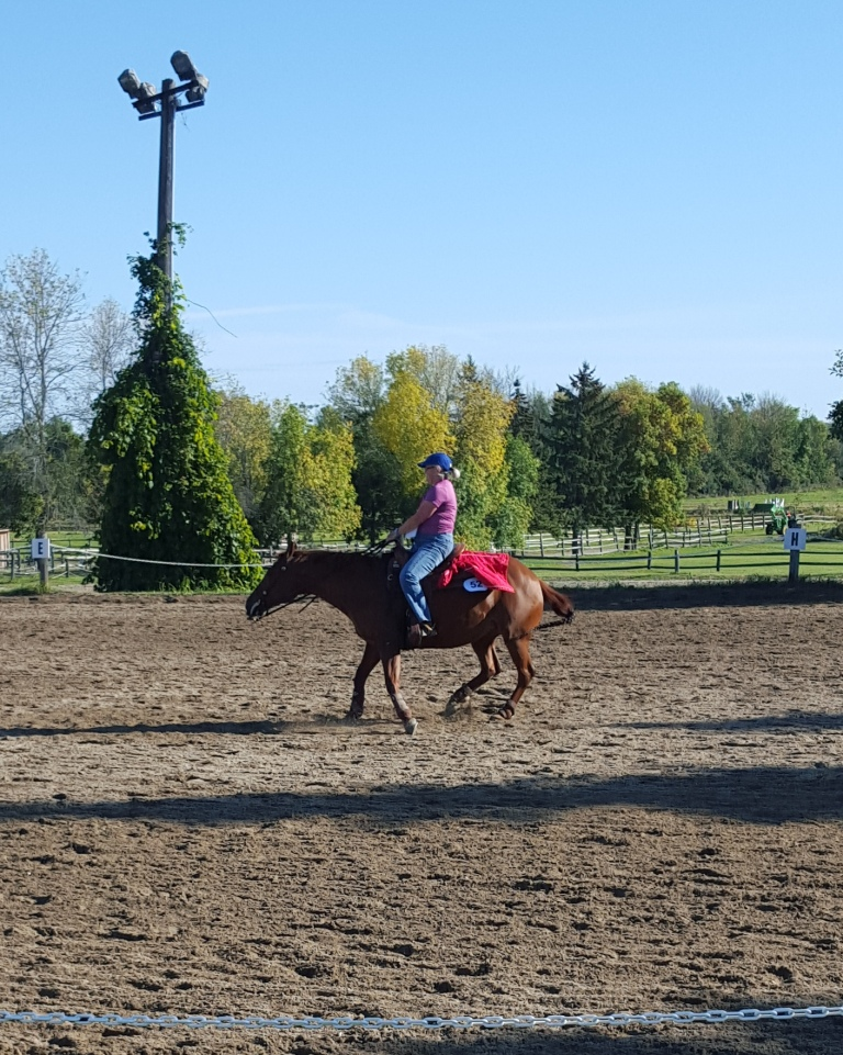 Because reining isn't hard enough...do it with a flappy jacket tied to the back of YOUR saddle!