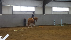 Misha Wylie & Oliver showing off their skills in the Hyde Moffat clinic on April 11, 2016.