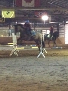 Taya & Gem working through the fun exercise in the arena this past week.