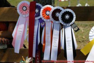2007 Oakhurst 3-day ribbons